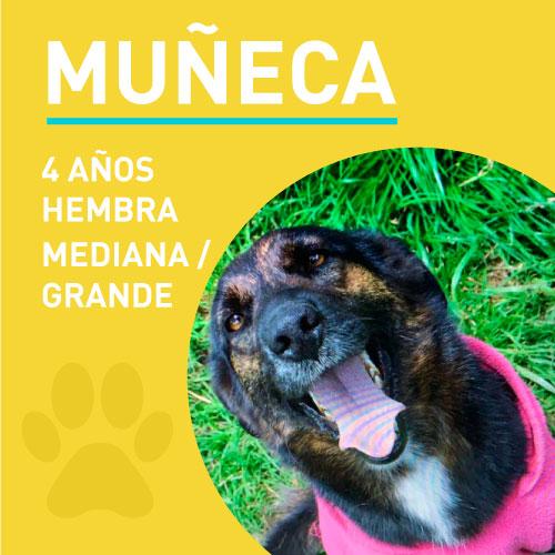 MUÑECA_NEW